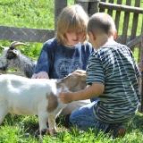 kinderbetreuung-familiengasthof-preis-15