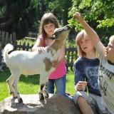 Kinderbetreuung Familiengasthof Preis